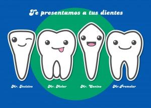 ¿Por qué tenemos dientes diferentes?